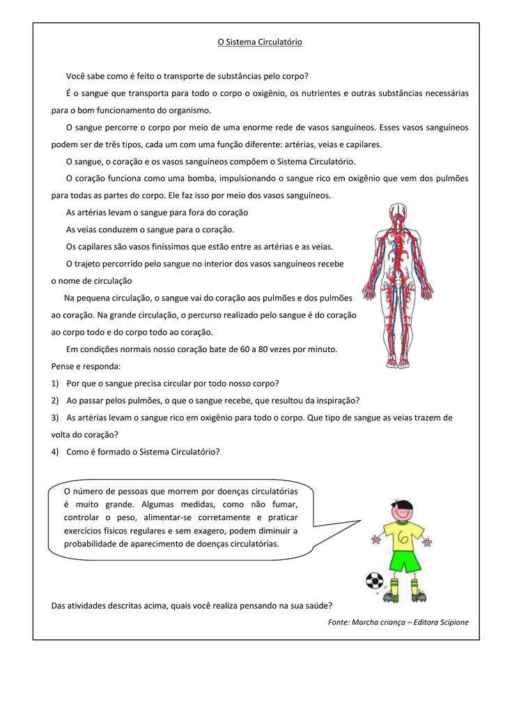 Circulatório sangue e do doenças do sistema