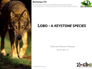 lobo - a keystone species