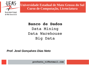 Banco de Dados Data Mining Data Warehouse Big Data