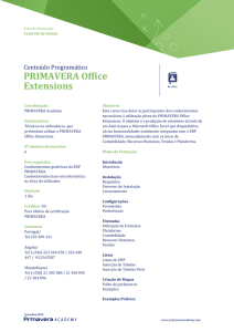 PRIMAVERA Office Extensions