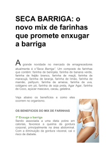 SECA BARRIGA - Gaia Natural