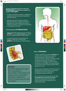 intestino grosso - FEA