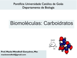 Biomoléculas: Carboidratos - SOL