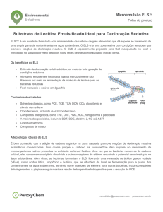 Substrato de Lecitina Emulsificado Ideal para