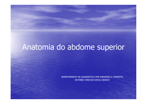Anatomia do abdome superior