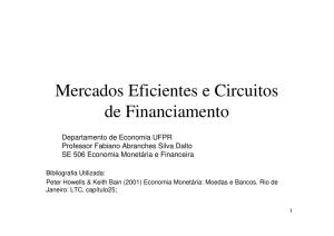 Mercados Eficientes e Circuitos de Financiamento