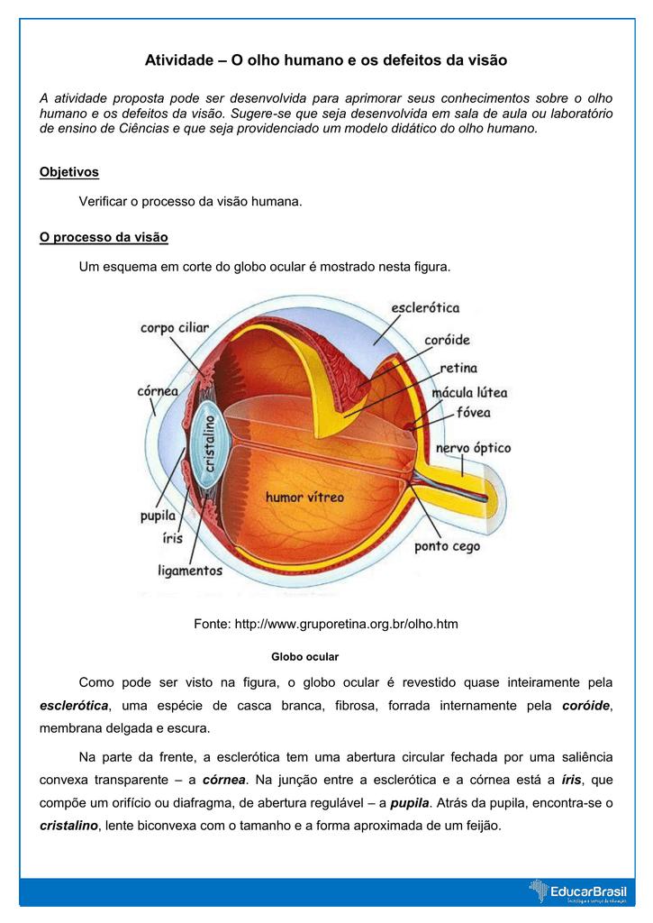 54d30571ad Atividade – O olho humano e os defeitos da visão