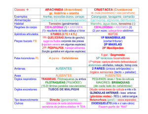 Classes Aracnideos e Crustaceos