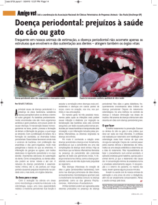 Veja mais - Animal Dental