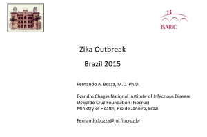 Possible antiviral interventivos against zika virus infection (by rational)
