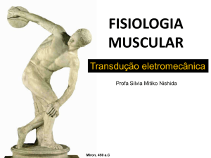 fisiologia muscular - IBB