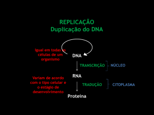 REPLICAÇÃO Duplicação do DNA