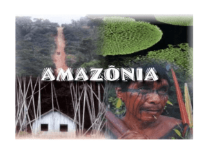 Amazônia Legal Amazônia Internacional