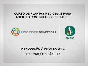 introducao-fitoterapia-informacoes-basicas