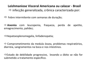4 Leishmania visceral americana