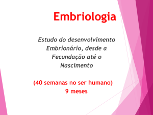 Embriologia Animal – Andréa Roveré
