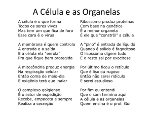 A Célula e as Organelas