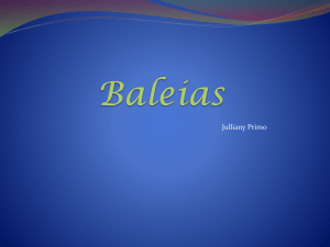 Baleias - WordPress.com