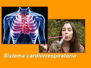 Diapositivo 1 - WordPress.com