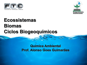 Slide 1 - Professor Alonso Goes Guimarães