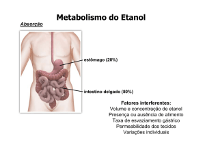 Metabolismo do Etanol - IQ-USP