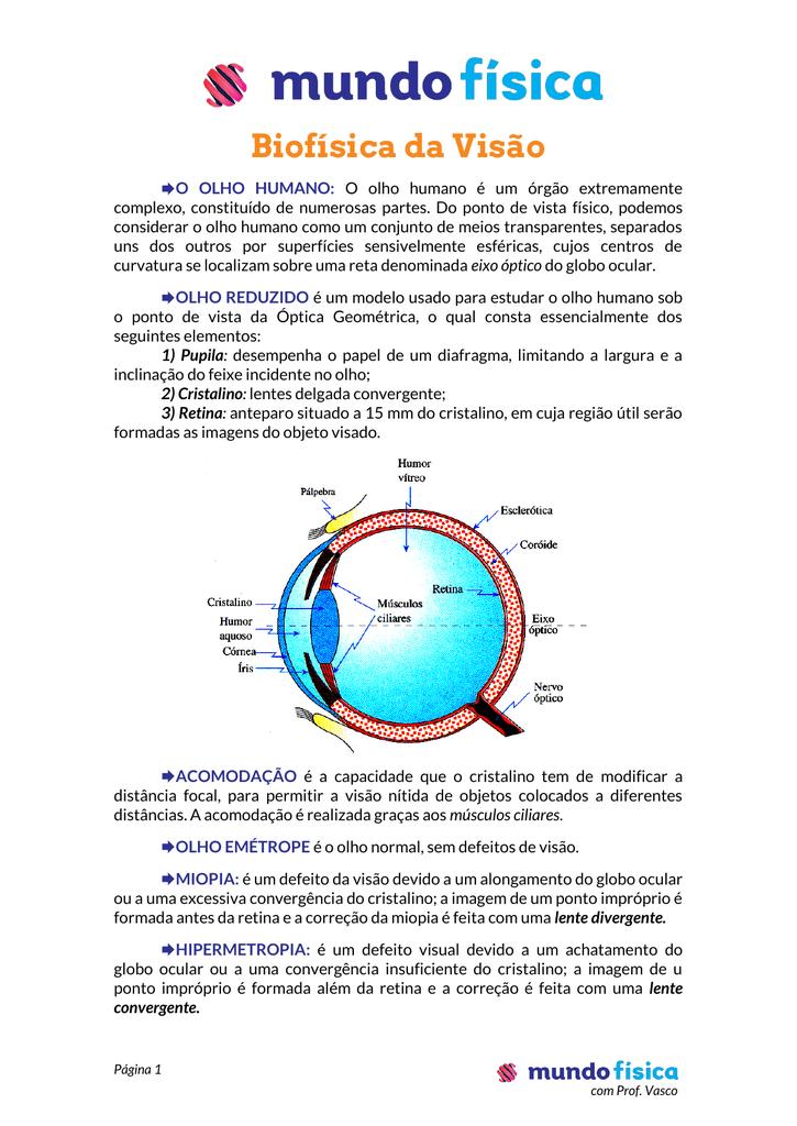1f1d3d1fe8 Biofísica da Visão