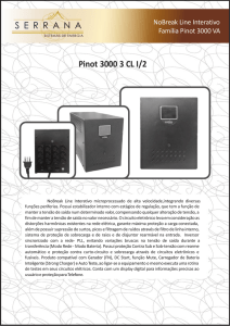 Pinot 3000 3 CL I/2