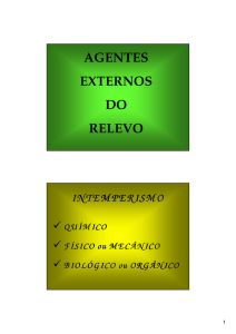 agentes externos do relevo intemperismo