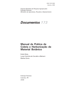 Documentos 173 - Infoteca-e