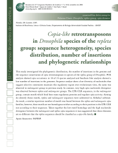 Copia-like retrotransposons in Drosophila species of the repleta