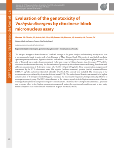Evaluation of the genotoxicity of Vochysia divergens by citocinese