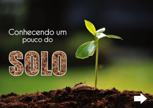 Livro Digital - WordPress.com