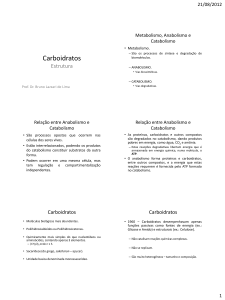 Carboidratos - WordPress.com
