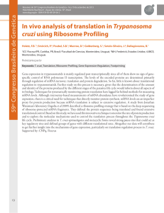 In vivo analysis of translation in Trypanosoma cruzi using Ribosome