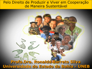 Profa.Dra. Ronalda Barreto Silva Universidade do Estado da Bahia